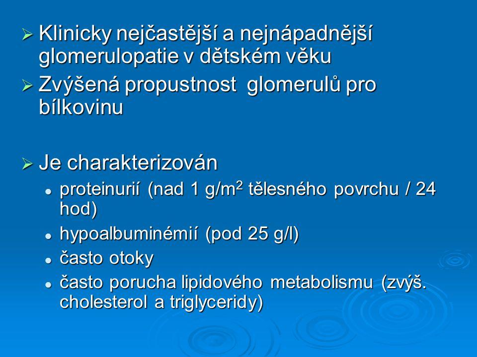  Klinicky nejčastější a nejnápadnější glomerulopatie v dětském věku  Zvýšená propustnost glomerulů pro bílkovinu  Je charakterizován proteinurií (n
