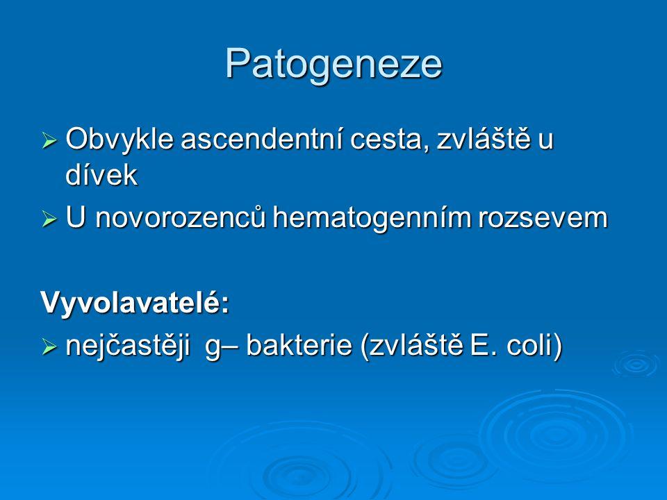 Patogeneze  Obvykle ascendentní cesta, zvláště u dívek  U novorozenců hematogenním rozsevem Vyvolavatelé:  nejčastěji g– bakterie (zvláště E. coli)