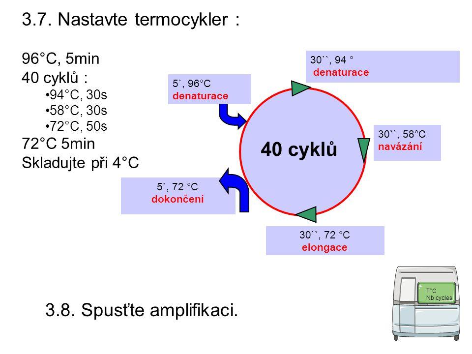 5`, 72 °C dokončení 30``, 94 ° denaturace 40 cyklů 5`, 96°C denaturace 30``, 58°C navázání 30``, 72 °C elongace 3.7.