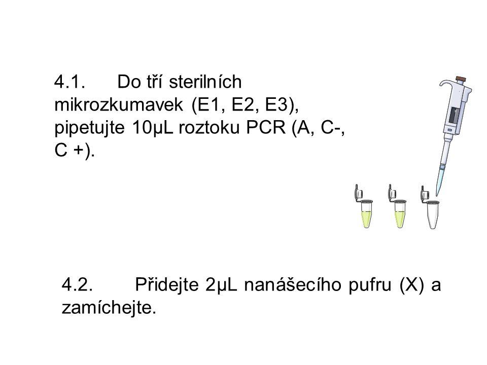 4.1. Do tří sterilních mikrozkumavek (E1, E2, E3), pipetujte 10μL roztoku PCR (A, C-, C +).
