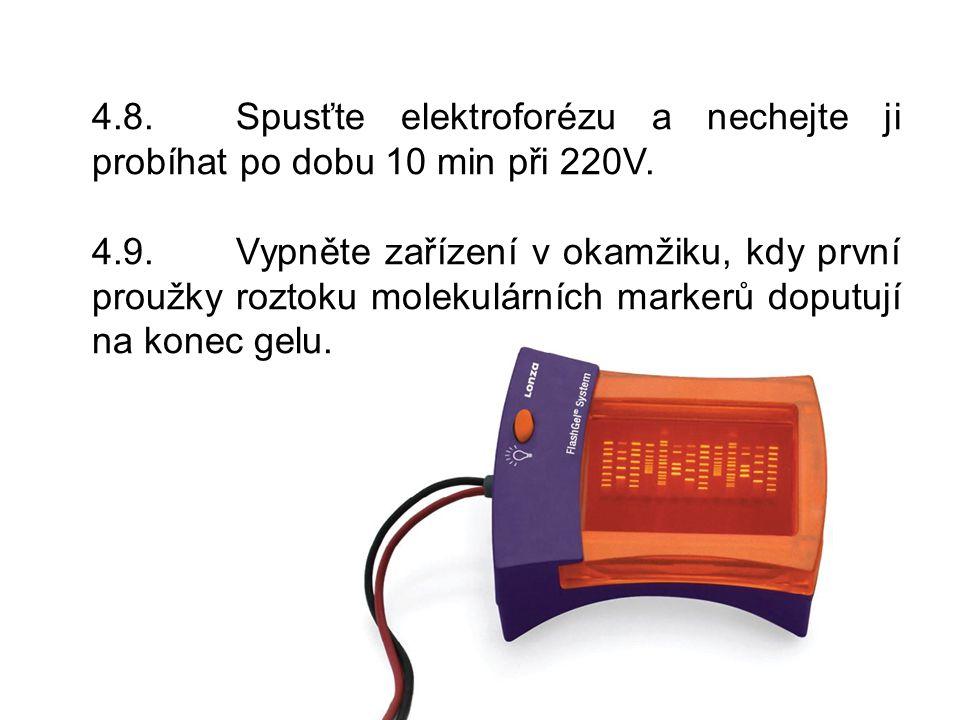 4.8.Spusťte elektroforézu a nechejte ji probíhat po dobu 10 min při 220V.