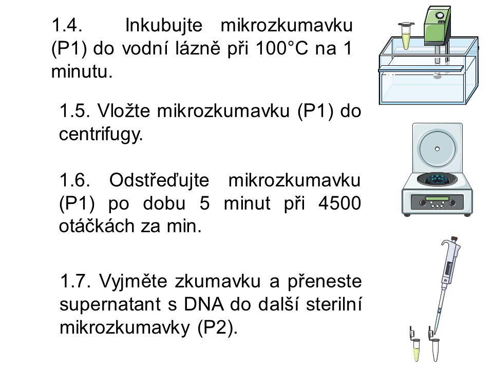 4.5.Do jamky pipetujte 5 µL testovaného roztoku E1.