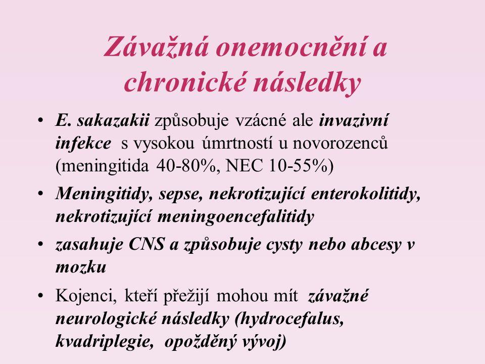 Závažná onemocnění a chronické následky E.