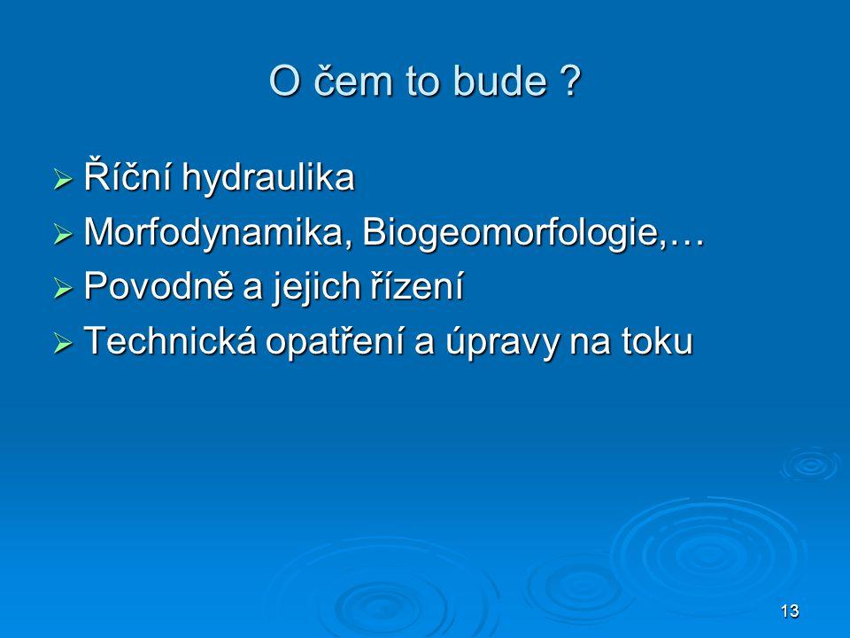 13 O čem to bude ?  Říční hydraulika  Morfodynamika, Biogeomorfologie,…  Povodně a jejich řízení  Technická opatření a úpravy na toku