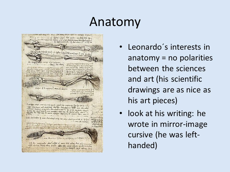 Anatomy Leonardo´s interests in anatomy = no polarities between the sciences and art (his scientific drawings are as nice as his art pieces) look at his writing: he wrote in mirror-image cursive (he was left- handed)