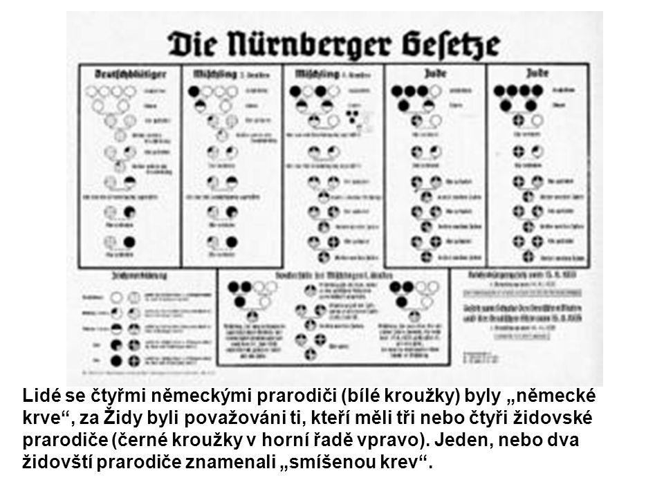 """Lidé se čtyřmi německými prarodiči (bílé kroužky) byly """"německé krve"""", za Židy byli považováni ti, kteří měli tři nebo čtyři židovské prarodiče (černé"""