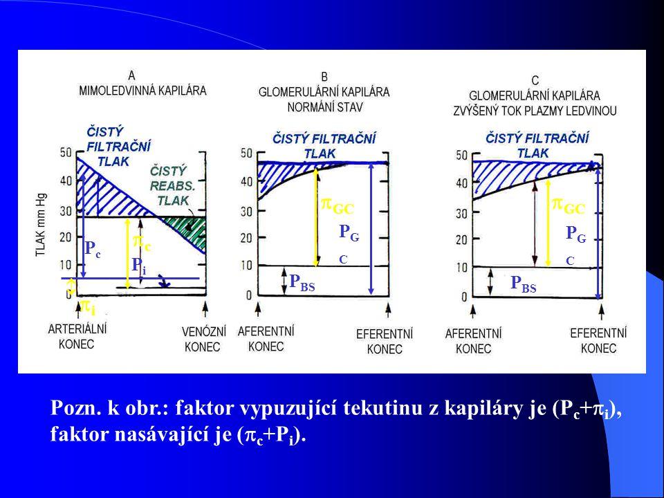  PcPc PiPi PGCPGC PGCPGC ii  GC P BS Pozn.
