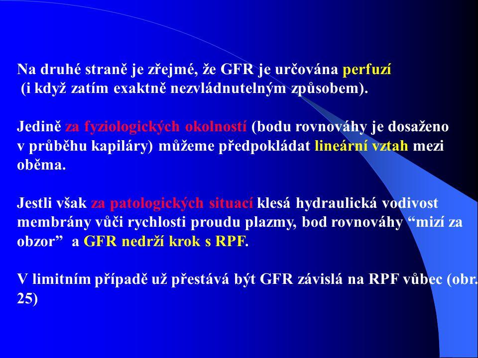 Na druhé straně je zřejmé, že GFR je určována perfuzí (i když zatím exaktně nezvládnutelným způsobem).