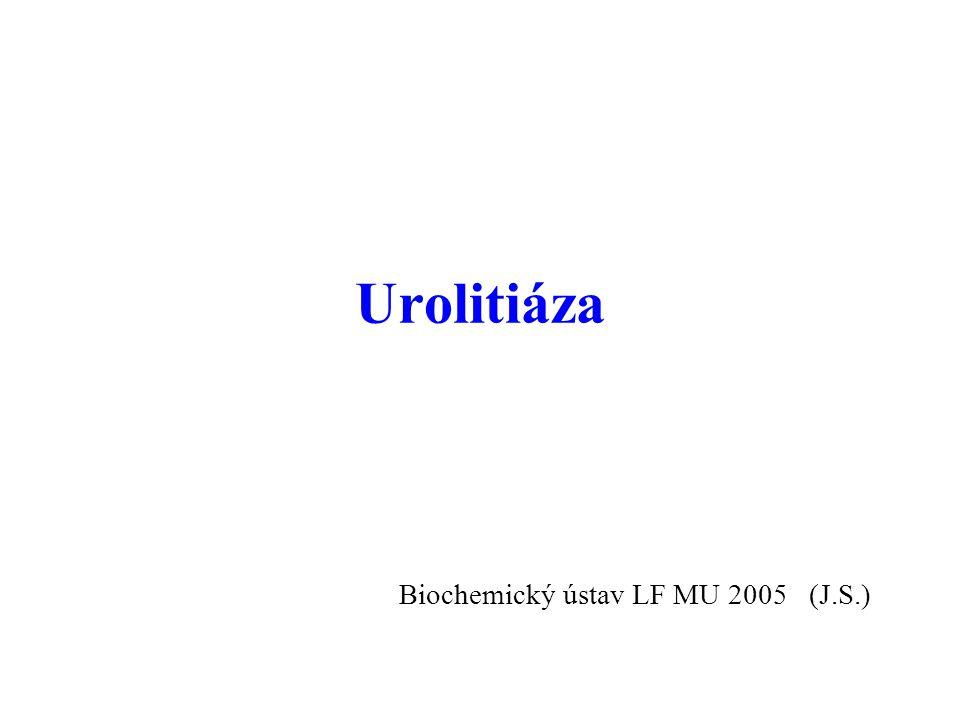 12 Rizikové hodnoty litogenních látek Kalcium dU-Ca > 6,25 mmol / d (děti > 0,10 mmol / kg) U-Ca / kreatinin > 0,592 S-Ca > 2,65 mmol / l P-Ca 2+ > 1,32 mmol / l Oxaláty dU-oxalát > 0,46 mmol / d U-oxalát / kreatinin > 0,030 Ionty Na + U-Na + > 200 mmol / l Močová kyselina dU-urát > 4,16 mmol / d U-urát / kreatinin > 0,30 S-urát > 415 mol / l (muži) > 365 mol / l (ženy) Biochemické vyšetření při urolitiáze