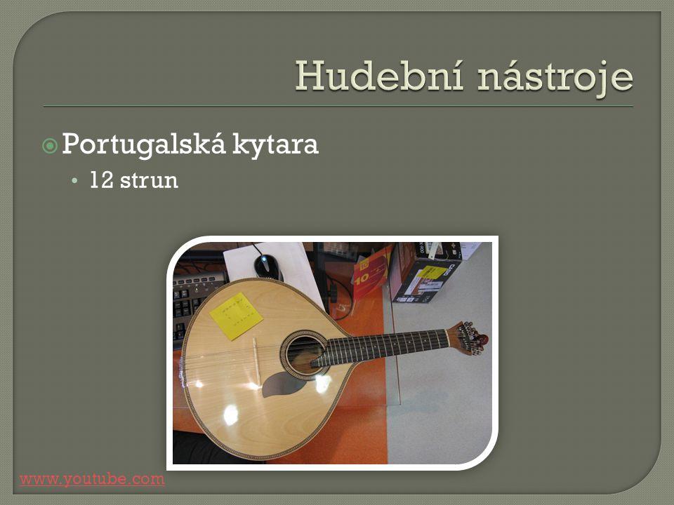 Portugalská kytara 12 strun www.youtube.com