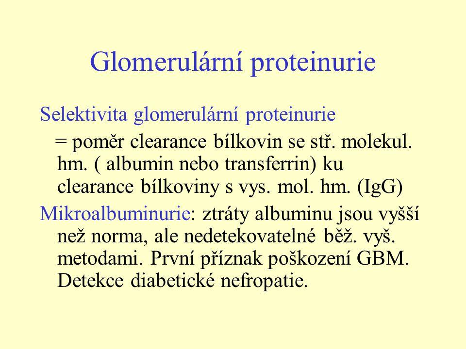 Glomerulární proteinurie Selektivita glomerulární proteinurie = poměr clearance bílkovin se stř.