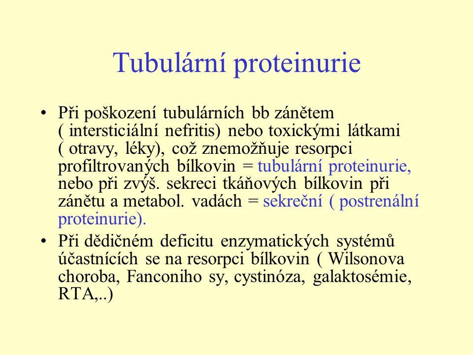 Tubulární proteinurie Při poškození tubulárních bb zánětem ( intersticiální nefritis) nebo toxickými látkami ( otravy, léky), což znemožňuje resorpci profiltrovaných bílkovin = tubulární proteinurie, nebo při zvýš.