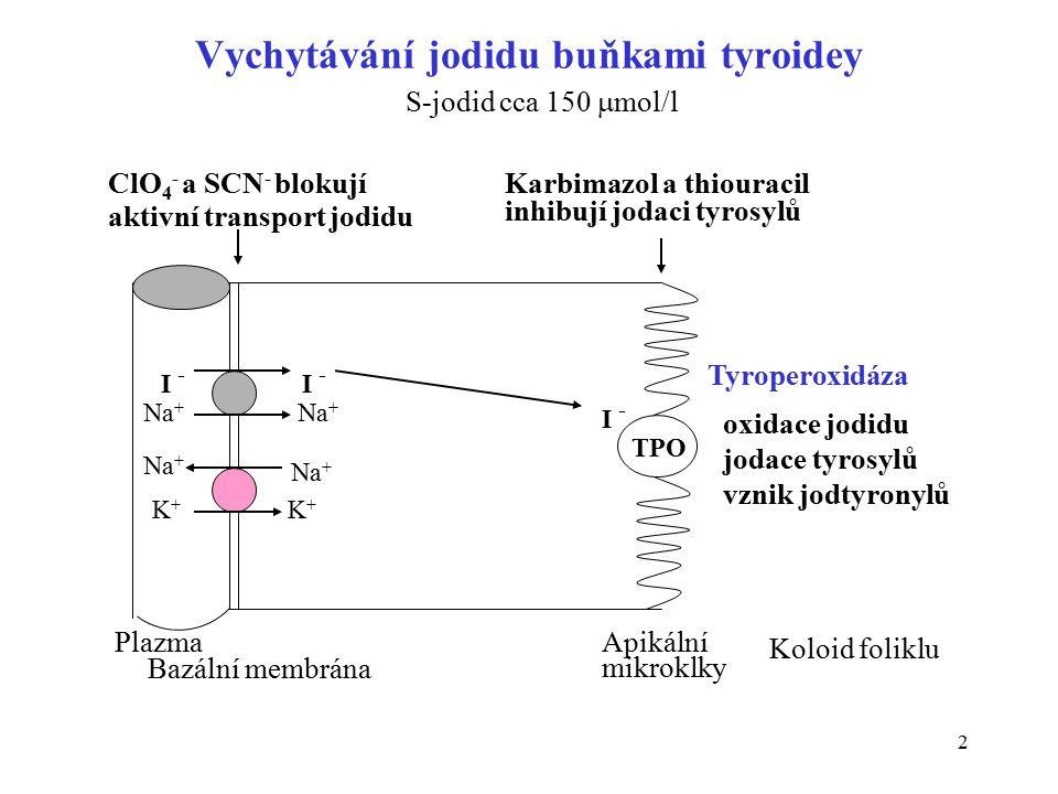 2 Vychytávání jodidu buňkami tyroidey I - I -I - TPO Na + K+K+ K+K+ Plazma Bazální membrána Apikální mikroklky Koloid foliklu ClO 4 - a SCN - blokují aktivní transport jodidu Karbimazol a thiouracil inhibují jodaci tyrosylů Tyroperoxidáza oxidace jodidu jodace tyrosylů vznik jodtyronylů S-jodid cca 150  mol/l