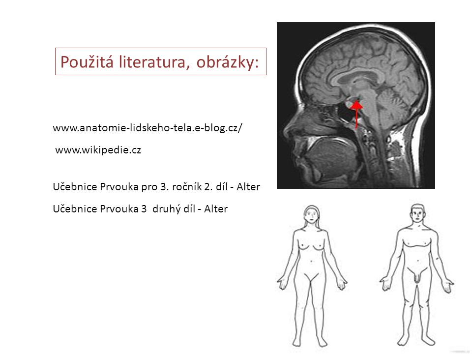 www.anatomie-lidskeho-tela.e-blog.cz/ www.wikipedie.cz Učebnice Prvouka pro 3. ročník 2. díl - Alter Učebnice Prvouka 3 druhý díl - Alter Použitá lite