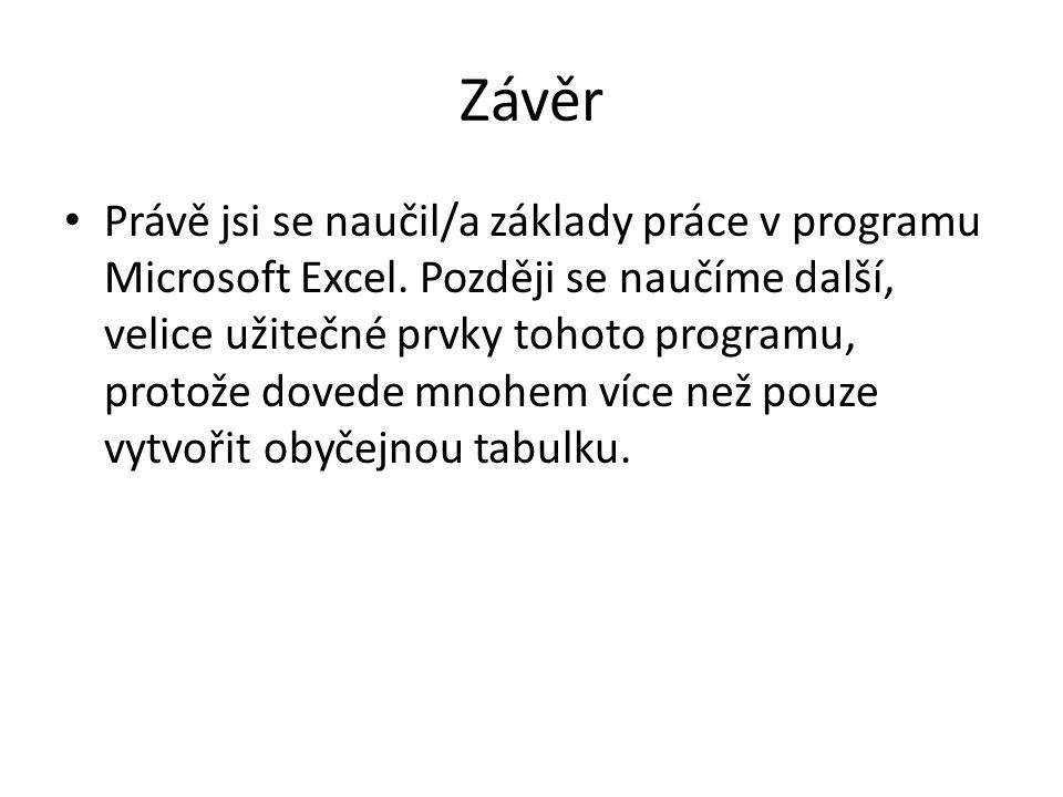 Závěr Právě jsi se naučil/a základy práce v programu Microsoft Excel.