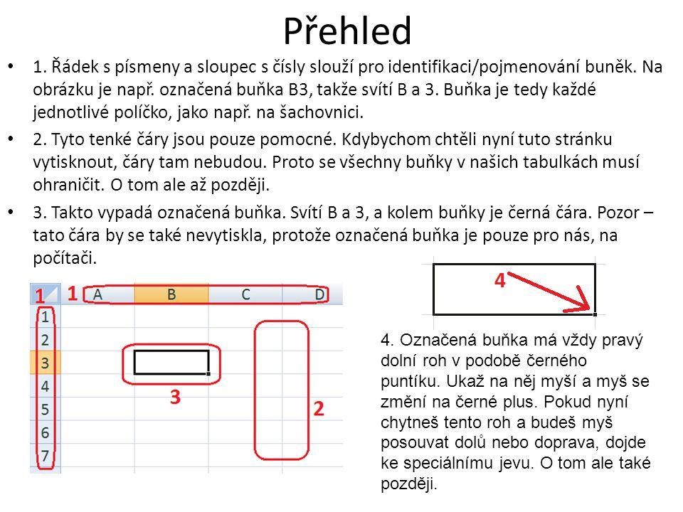 Přehled 1. Řádek s písmeny a sloupec s čísly slouží pro identifikaci/pojmenování buněk.