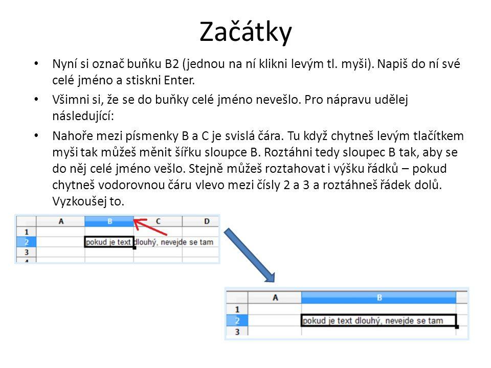 Začátky Nyní si označ buňku B2 (jednou na ní klikni levým tl.