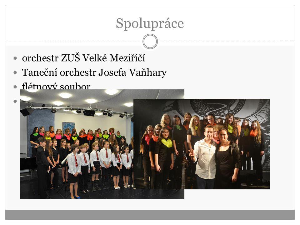 Spolupráce orchestr ZUŠ Velké Meziříčí Taneční orchestr Josefa Vaňhary flétnový soubor Petr Bende