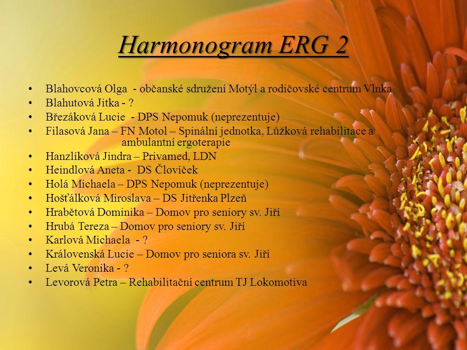 Harmonogram ERG 2 Blahovcová Olga - občanské sdružení Motýl a rodičovské centrum Vlnka Blahutová Jitka - .