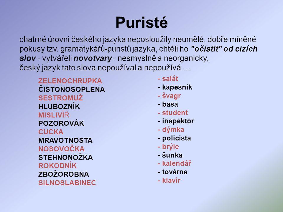 chatrné úrovni českého jazyka neposloužily neumělé, dobře míněné pokusy tzv. gramatykářů-puristů jazyka, chtěli ho