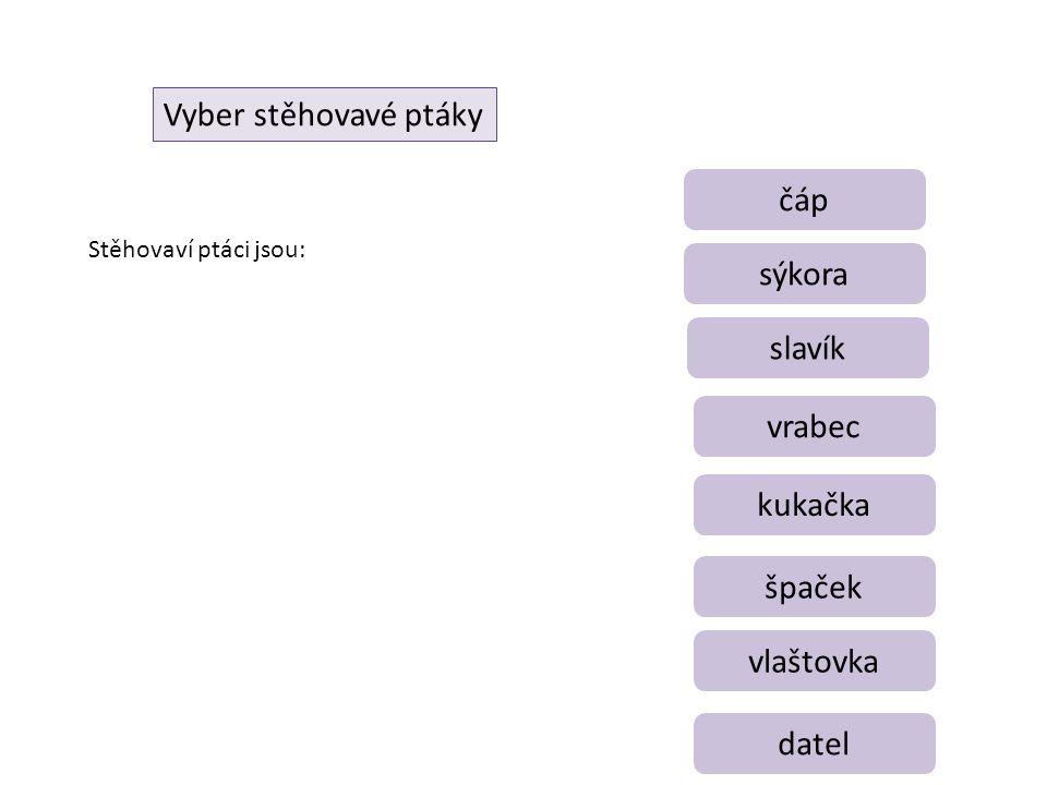 Vyber stěhovavé ptáky čáp datel vlaštovka špaček kukačka vrabec slavík sýkora Stěhovaví ptáci jsou: