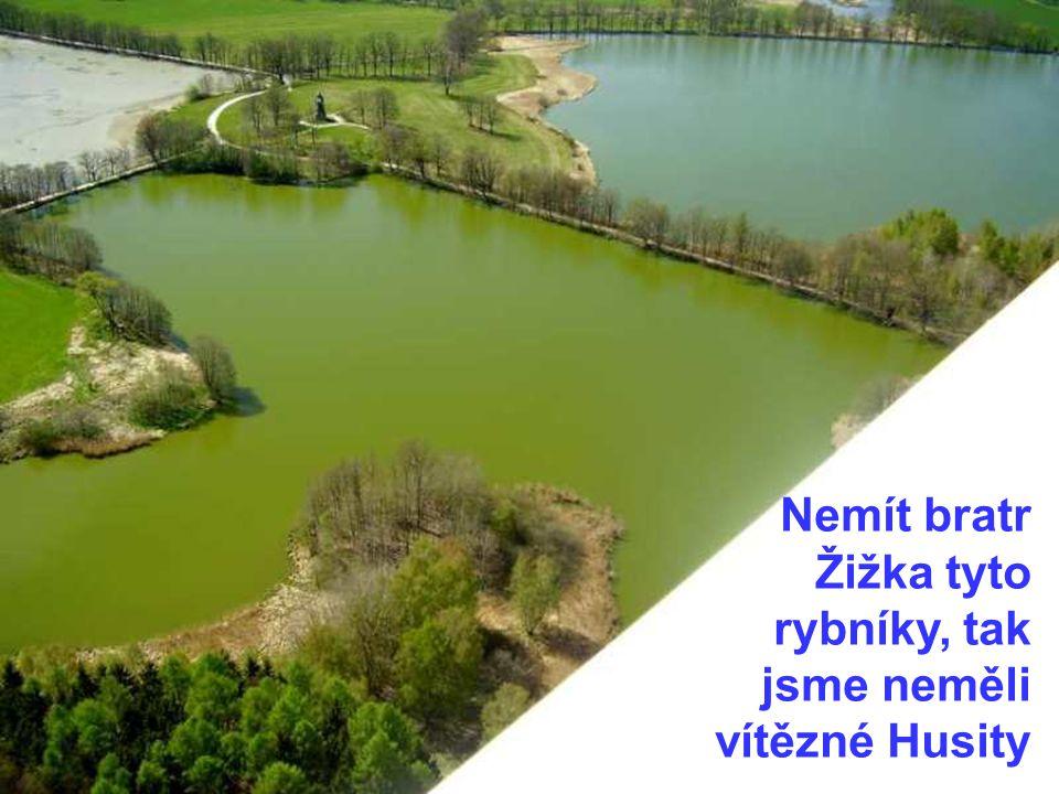 Nemít bratr Žižka tyto rybníky, tak jsme neměli vítězné Husity