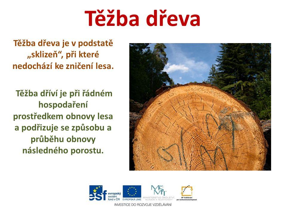 """Těžba dřeva Těžba dřeva je v podstatě """"sklizeň"""", při které nedochází ke zničení lesa. Těžba dříví je při řádném hospodaření prostředkem obnovy lesa a"""