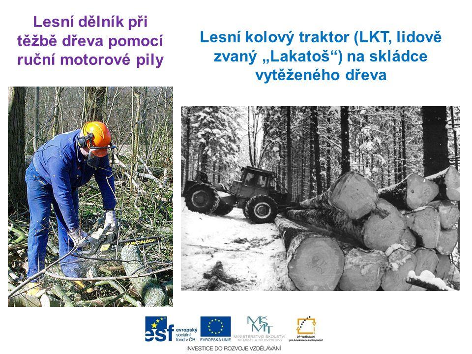 """Lesní dělník při těžbě dřeva pomocí ruční motorové pily Lesní kolový traktor (LKT, lidově zvaný """"Lakatoš ) na skládce vytěženého dřeva"""