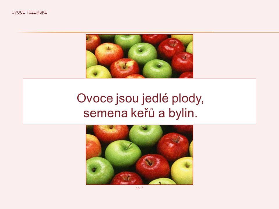 obr. 1 Ovoce jsou jedlé plody, semena keřů a bylin.