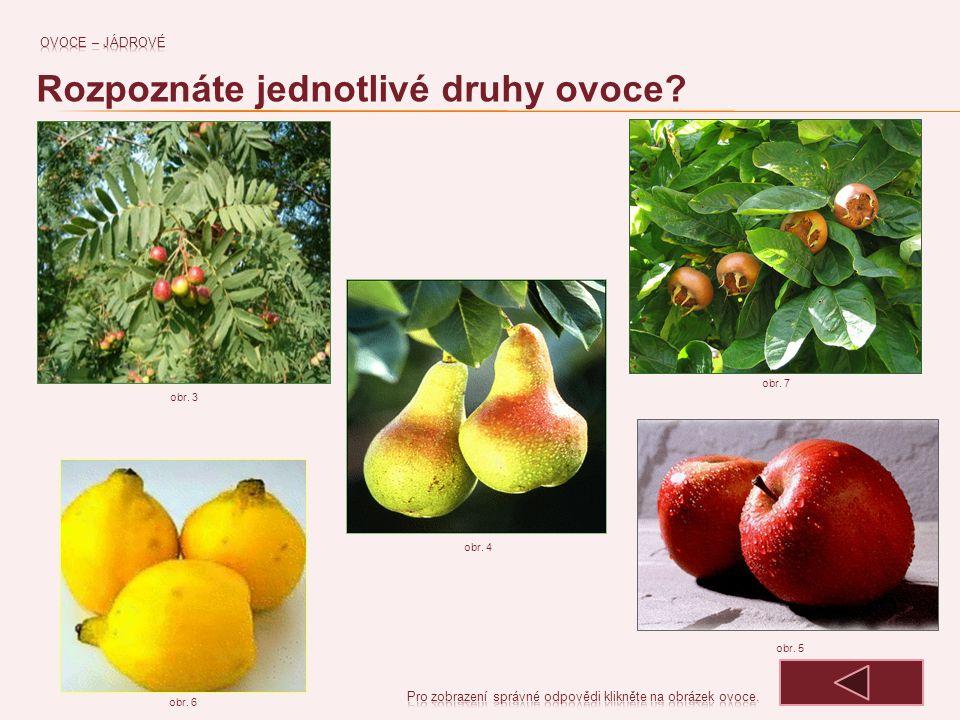 OSKERUŠE MIŠPULE KDOULE HRUŠKY obr. 3 JABLKA obr. 4 obr. 6 obr. 7 obr. 5 Rozpoznáte jednotlivé druhy ovoce?