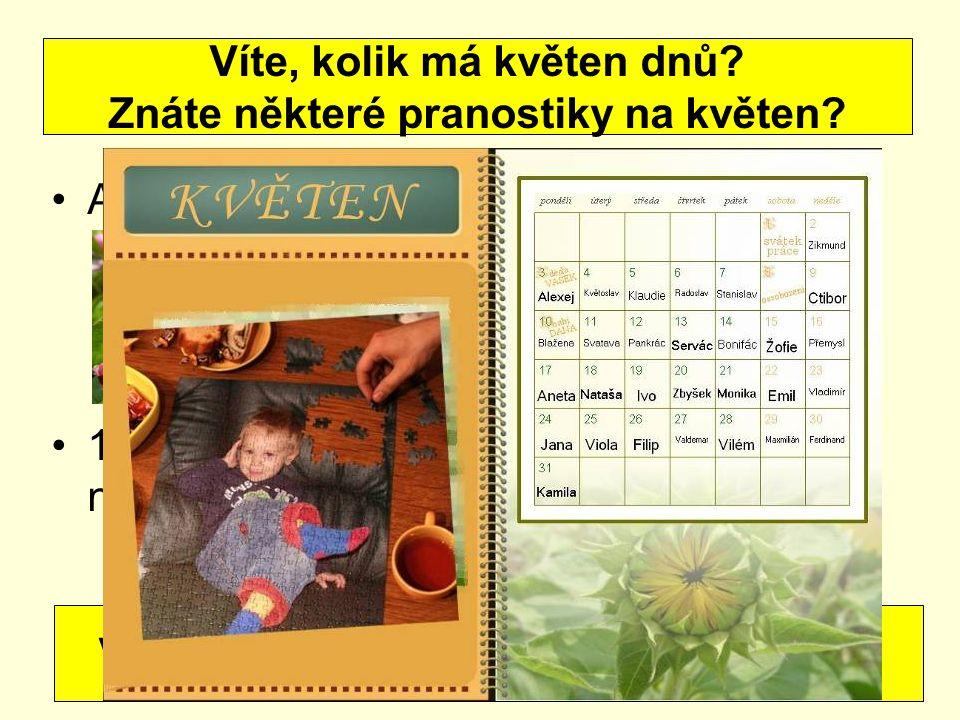 12.5. – Pankrác, Servác, Bonifác – ledoví muži spalují mrazem ovoce i růži 15.
