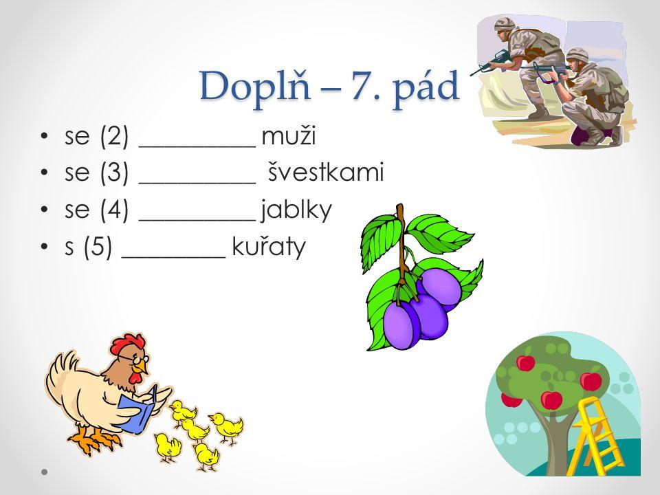 Doplň – 7. pád se (2) _________ muži se (3) _________ švestkami se (4) _________ jablky s (5) ________ kuřaty