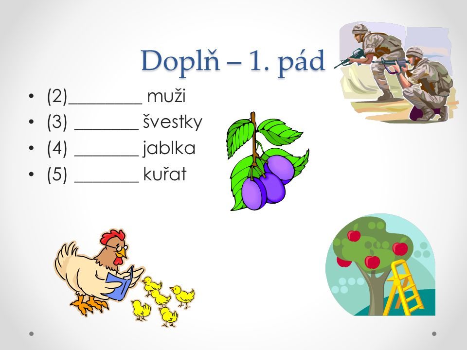 Doplň – 1. pád (2)________ muži (3) _______ švestky (4) _______ jablka (5) _______ kuřat