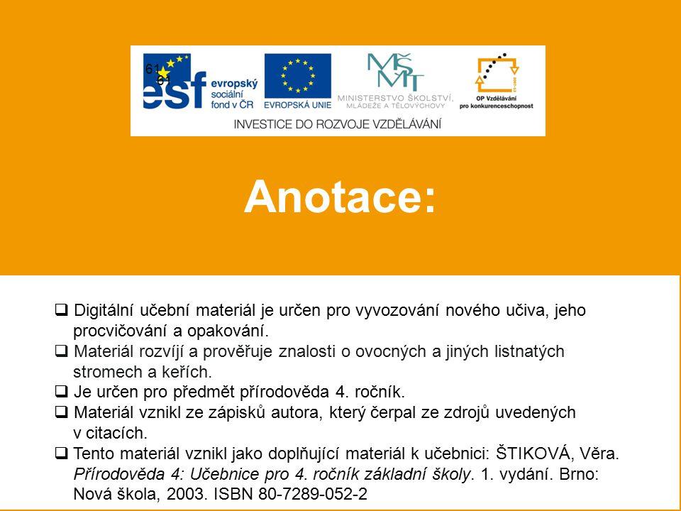 POUŽITÉ ZDROJE 26) Soubor:Betula Pendula at Stockholm University 2005-07-01.jpg.