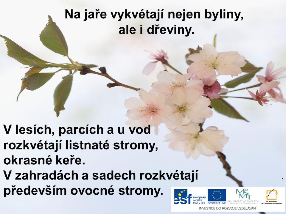Na jaře vykvétají nejen byliny, ale i dřeviny. V lesích, parcích a u vod rozkvétají listnaté stromy, okrasné keře. V zahradách a sadech rozkvétají pře