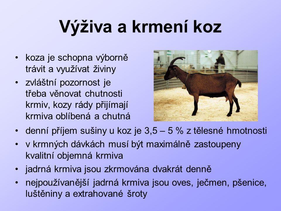 Výživa a krmení koz koza je schopna výborně trávit a využívat živiny zvláštní pozornost je třeba věnovat chutnosti krmiv, kozy rády přijímají krmiva o