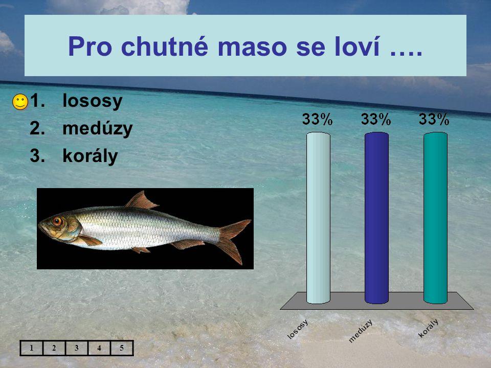 Pro chutné maso se loví …. 1.lososy 2.medúzy 3.korály 12345