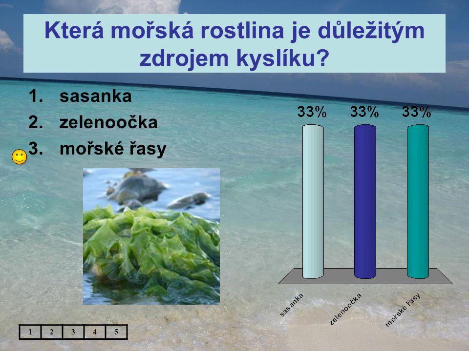 Která mořská rostlina je důležitým zdrojem kyslíku 1.sasanka 2.zelenoočka 3.mořské řasy 12345