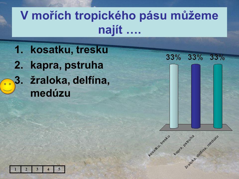 V mořích tropického pásu můžeme najít ….