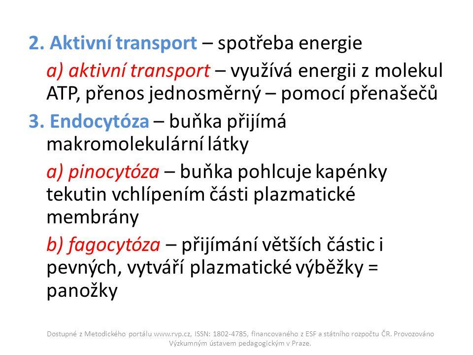 2. Aktivní transport – spotřeba energie a) aktivní transport – využívá energii z molekul ATP, přenos jednosměrný – pomocí přenašečů 3. Endocytóza – bu