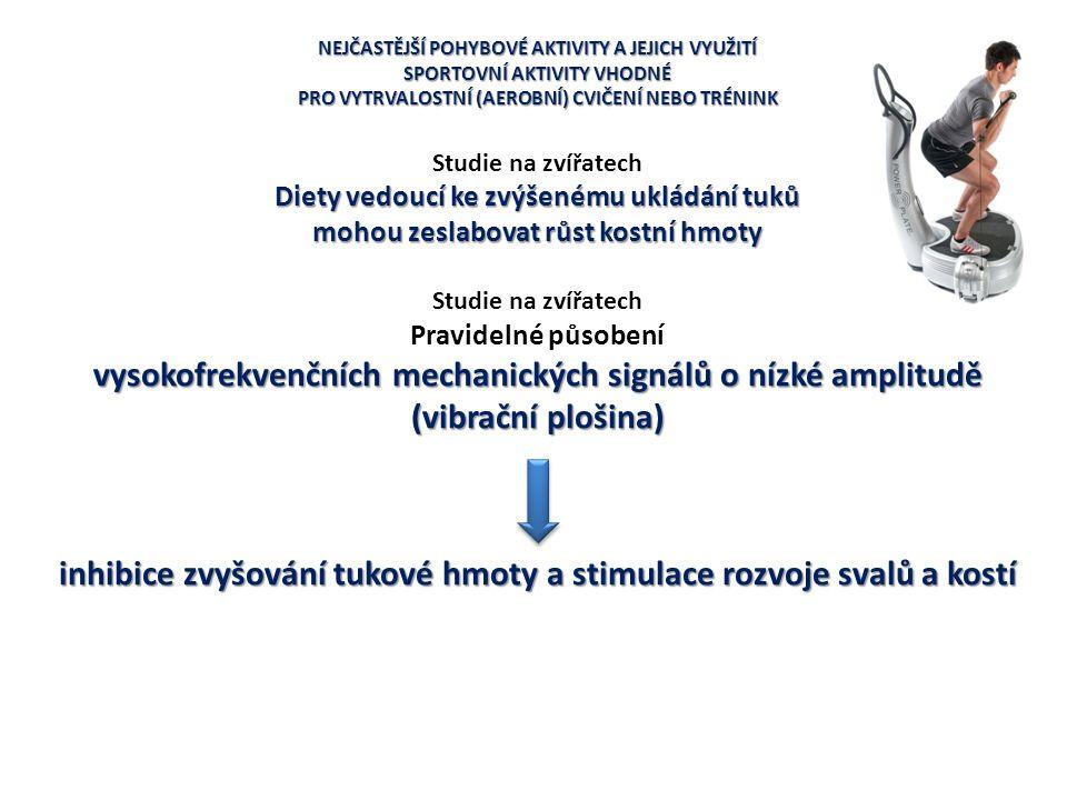 NEJČASTĚJŠÍ POHYBOVÉ AKTIVITY A JEJICH VYUŽITÍ SPORTOVNÍ AKTIVITY VHODNÉ PRO VYTRVALOSTNÍ (AEROBNÍ) CVIČENÍ NEBO TRÉNINK Studie na zvířatech Diety ved