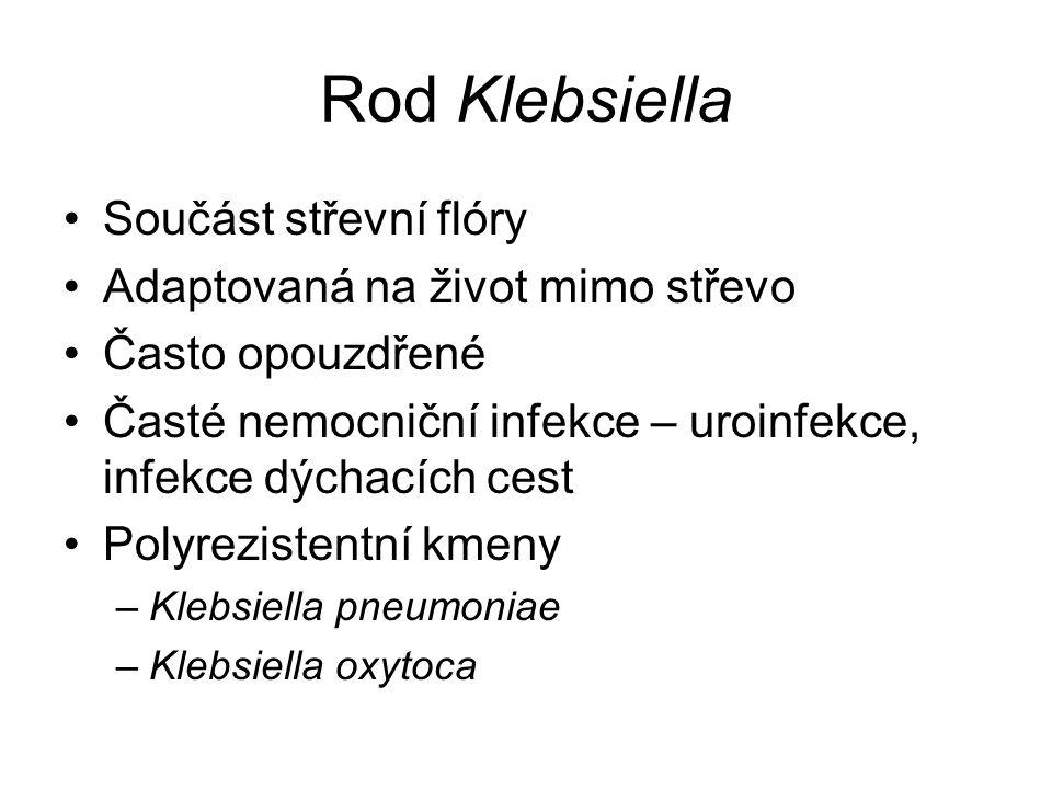 Rod Klebsiella Součást střevní flóry Adaptovaná na život mimo střevo Často opouzdřené Časté nemocniční infekce – uroinfekce, infekce dýchacích cest Polyrezistentní kmeny –Klebsiella pneumoniae –Klebsiella oxytoca