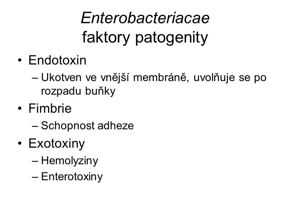 Enterobacteriacae faktory patogenity Endotoxin –Ukotven ve vnější membráně, uvolňuje se po rozpadu buňky Fimbrie –Schopnost adheze Exotoxiny –Hemolyziny –Enterotoxiny
