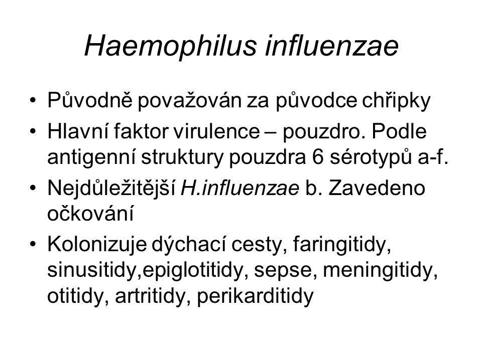Haemophilus influenzae Původně považován za původce chřipky Hlavní faktor virulence – pouzdro. Podle antigenní struktury pouzdra 6 sérotypů a-f. Nejdů