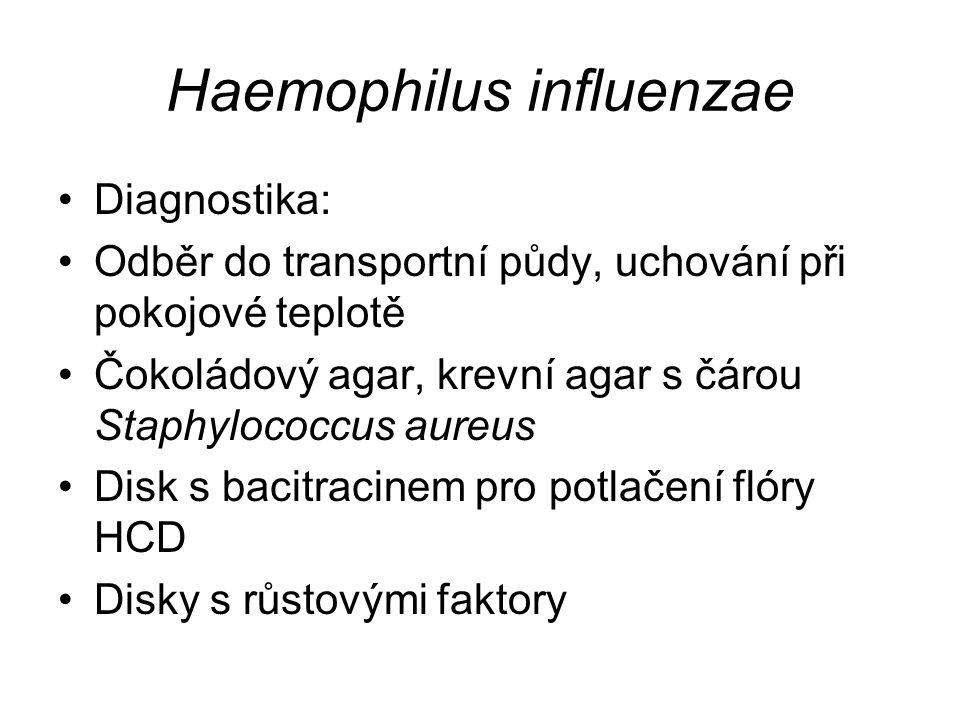 Haemophilus influenzae Diagnostika: Odběr do transportní půdy, uchování při pokojové teplotě Čokoládový agar, krevní agar s čárou Staphylococcus aureus Disk s bacitracinem pro potlačení flóry HCD Disky s růstovými faktory