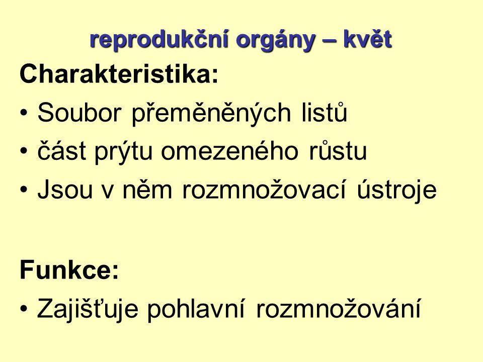 Charakteristika: Soubor přeměněných listů část prýtu omezeného růstu Jsou v něm rozmnožovací ústroje Funkce: Zajišťuje pohlavní rozmnožování reprodukční orgány – květ