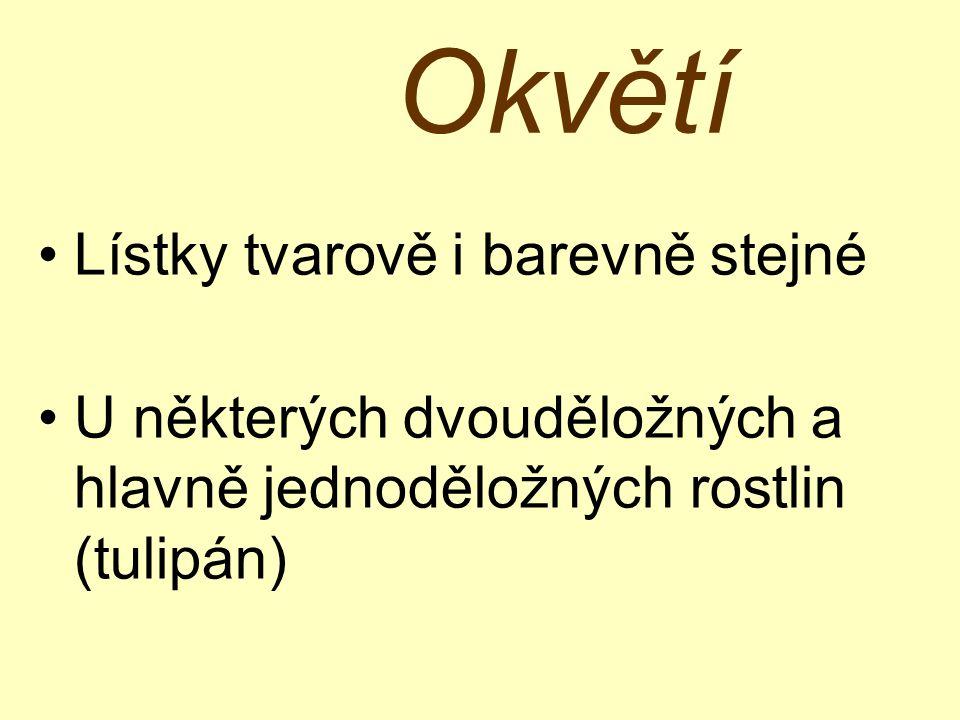 Reprodukční orgány a) Plodolist b) Tyčinka