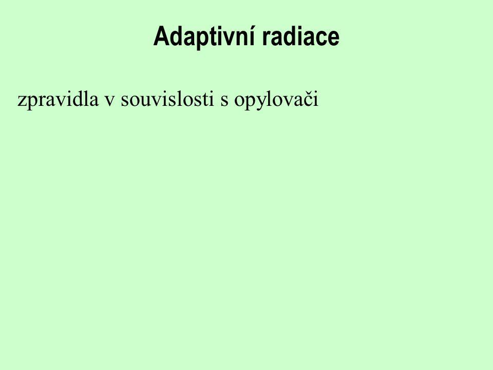 Adaptivní radiace zpravidla v souvislosti s opylovači
