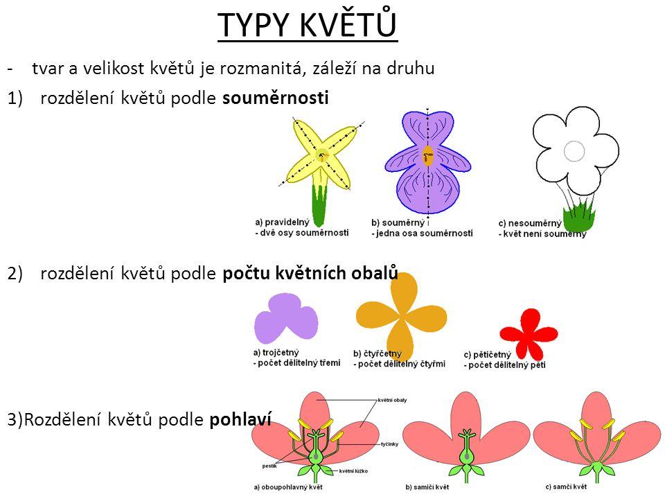 TYPY KVĚTŮ -tvar a velikost květů je rozmanitá, záleží na druhu 1)rozdělení květů podle souměrnosti 2)rozdělení květů podle počtu květních obalů 3)Roz