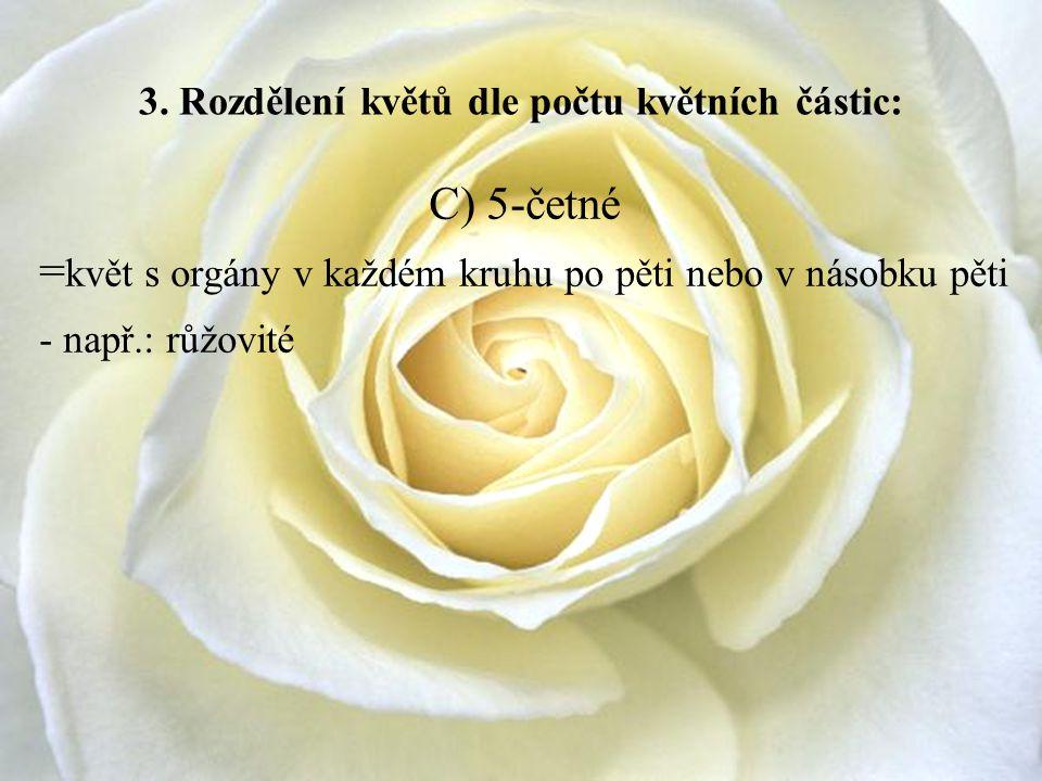 3. Rozdělení květů dle počtu květních částic: C) 5-četné = květ s orgány v každém kruhu po pěti nebo v násobku pěti - např.: růžovité